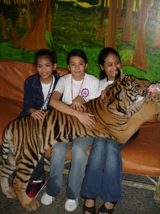 I'm in love with the tiger, but I think the tiger's in love with my hand.